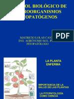6.- Control Biológico de Enfermedades (ML)