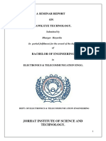 Seminar Report on Hawk-Eye