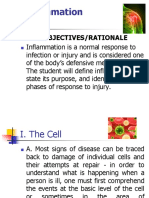 8.Inflammation