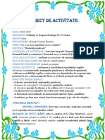 3_proiect_integrat