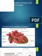 Conduction System of Heart and Temporary Pacemaker