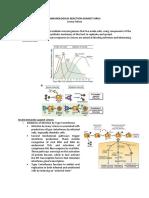 Immunological Reaction Against Virus