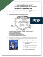 Avaliação Diagnostica 1 Ano-convertido (1)