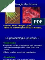Parasitologie Des Bovins