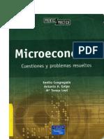 Ejercicios de Microeconomía - E. Congregado