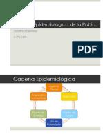 Cadena Epidemiologica- Rabia