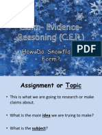 cer presentation and snowflakes