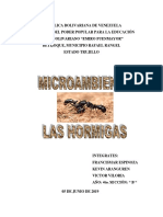 Qué Es Un Microambiente