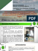Ppt-tesis Rev 03