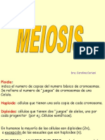 Teorico Meiosis 2014.ppt