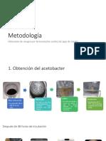MetodologíaFermentación acética