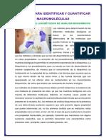 Métodos Para Identificar y Cuantificar Macromoléculas