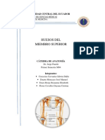 miembro superior(1).PDF