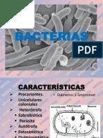 Bacterias Bryce 2013