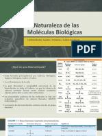 2. Naturaleza de Las Biomoléculas