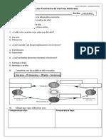 Evaluación Formativa Ciencias Noviembre