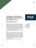 Linguas indigenas do Brasil