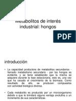 Metabolitos Fungicos Industriales