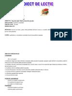 0 2 Proiectdidacticromana (1)