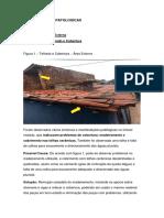 Projeto de Extensão - Igapó - Pronto