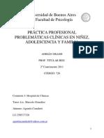 Informe Final  Práctica Profesional Problemáticas clínicas en Niñez, Adolescencia y Familia