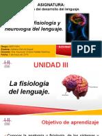 Anatomia y fisiología del lenguaje