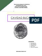 Cavidad Bucal (Anatomia)