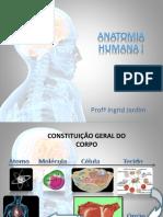 Anatomia Básica 2016.1.pptx