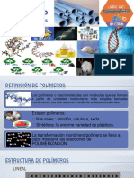 Diapositiva Ana Maria