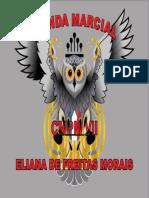 coruja brasão