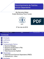 ApresentacaoNilo-Final.pdf
