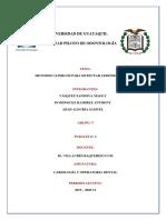 METODOS DE INSPECCION TACTIL- expo.docx