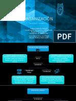 organización_fundamentos de administración