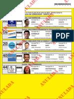 Candidatos a Concejales