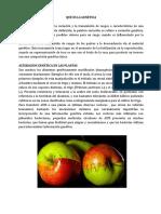 354580542-Alteracion-Genetica-en-Las-Plantas.docx
