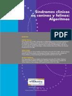 sindromes y algortimos.pdf