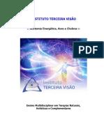 01 - Anatomia Energética - Abordagem completa.pdf
