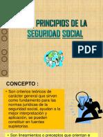 Tema 4 Principios SS