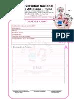 DIARIO-DE-CAMPO_OK.doc