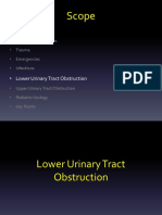 6. Lower Urinary Tract Obstruction.pptx