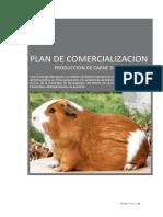 Cuy Plandenegocios 140621095040 Phpapp01