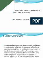 11Estudio de La Produccion de Cal