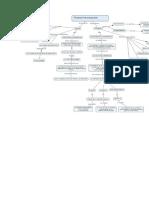 Mapa Conceptual Tecnicas Para Royeccion de Presupuesto