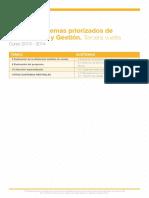 Priorizaciones Pg 13