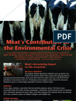 Meat and Environmental Destruction