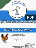 sistemaendocrinoenaves-110808182249-phpapp02