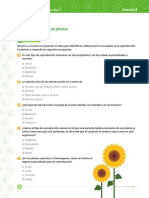 cien_8_b3_p3_est.pdf