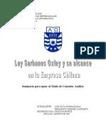 Silva Hormazabal, Luis.pdf