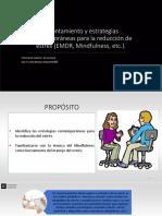 334784180 Examen Mental Informe y Entrevista Clinica