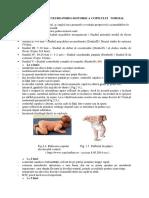 Pediatrie LP 4